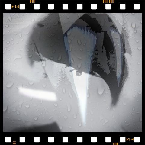 20111014-153457.jpg